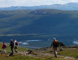 Schwede Schwedenstube I love Kungsleden – Wandern im Herzen Lapplands