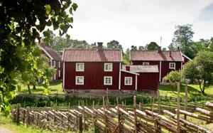 warum ist alles aus holz die schwedische bauweise. Black Bedroom Furniture Sets. Home Design Ideas