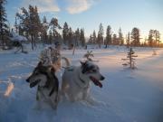ct_SnowTrail+Winterfoto