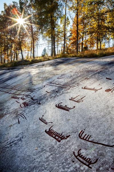 Felsritzungen in Tanumshede. Foto: Emelie Asplund/ imagebank.sweden.se