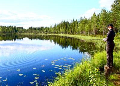 Reisen in die unberührte Natur Schwedens.