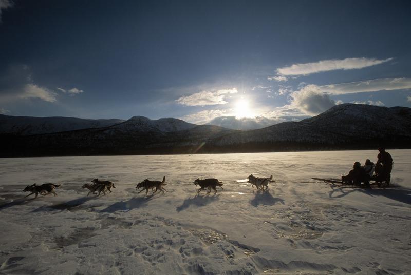 Zum Polarkreis ist es nicht mehr weit. Foto: Staffan Widstrand, imagebank.sweden.se