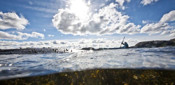 Foto: Henrik Trygg/ imagebank.sweden.se