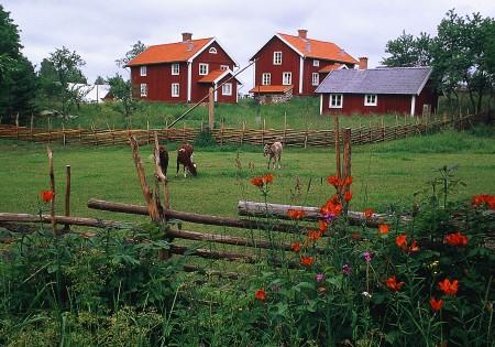 stf hr 100 70 aasens by 01 schwedenstube dein portal f r reisen nach schweden. Black Bedroom Furniture Sets. Home Design Ideas
