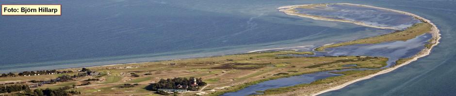 Die Sand-Halbinsel Måkläppen von oben: Foto: Björn Hillarp, Måkläppsföreningen.