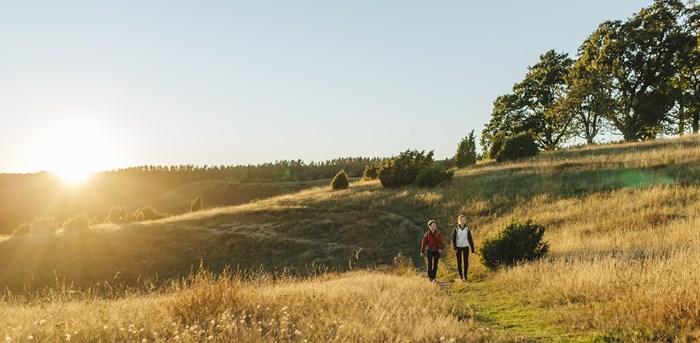 Zu Fuß nach Schweden. Von Trelleborg starten Wanderer direkt auf den Skåneleden. Foto: Mickael Tannus, skaneleden.se
