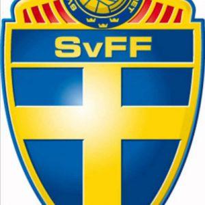 Neue Zeiten für den schwedischen Fußball.