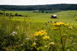 Häuschen in Nordschweden