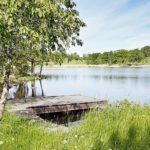 Ferienhaus in Schweden - Se mit Steg und Baum
