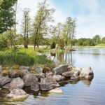 Ferienhaus in Schweden am See mit Steinen und Bäumen