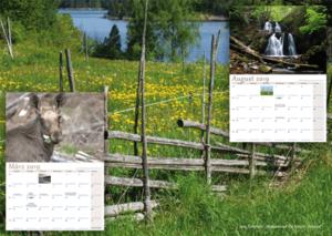 Schwedenstube Kalender Beispiel Bilder 2019