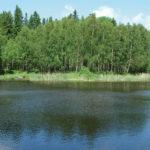 Ferienhaus Aneby, Schweden mit Wald und See