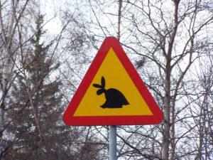 Warnschild Skvader