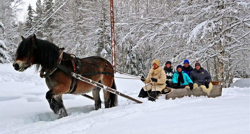 Schlittenfahrt im Schnee