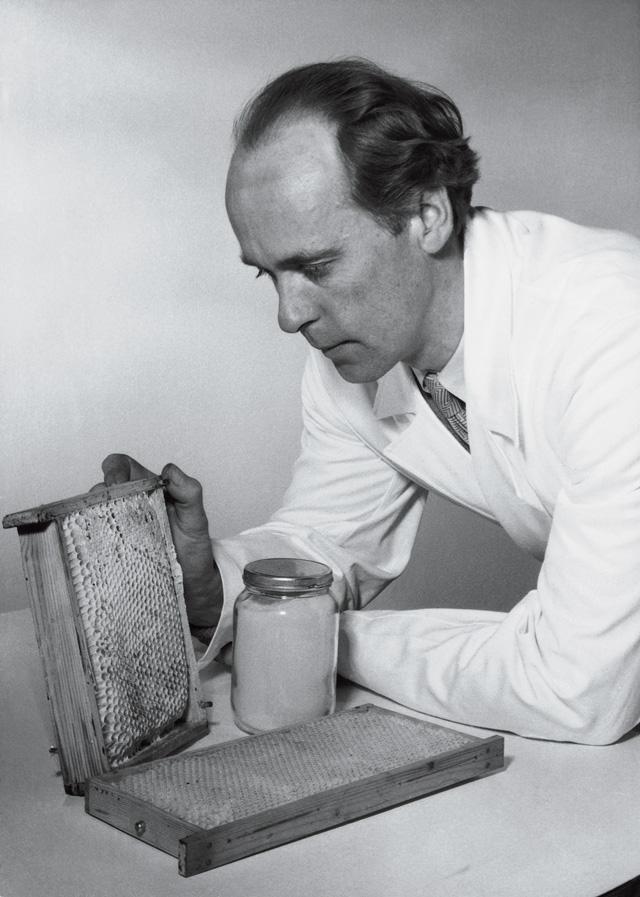 """Gösta Carlsson """"Pollenkönig"""