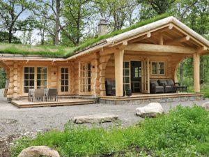 Ferienhaus mit begrüntem Dach