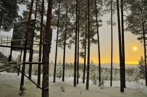 Das berühmte Tree-Hotel liegt im Norrbotten. Foto: Lola Akinmade Åkerström/ imagebank.sweden.se