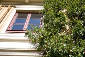 "Reifer Fruchtbaum im ""Garten Schwedens"". Bild: Fotoakuten.se"