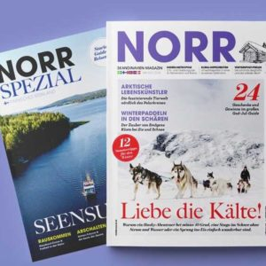 Norr Cover Winter