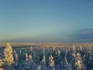 Anfang Dezember auf dem Solberg bei Nattavaara; Foto: Silke Gersdorf