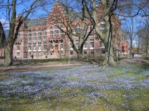 Die Bibliothek der Universität Lund im Frühjahr