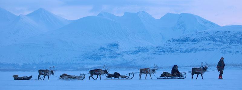 Fast wie Santa mit seinem Rentier-Gespann... Foto: Staffan Widstrand/ imagebank.sweden.se